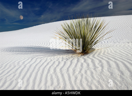 Moonrise - White Sands, New Mexico, Full moon - Stock Photo