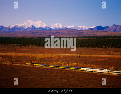 The Alaska Railroad and the Wilderness Express with Mount Denali, Denali National Park in Alaska - Stock Photo