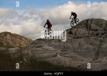 Female Mountain Bikers in Kirroughtree,  Scotland, UK - Stock Photo