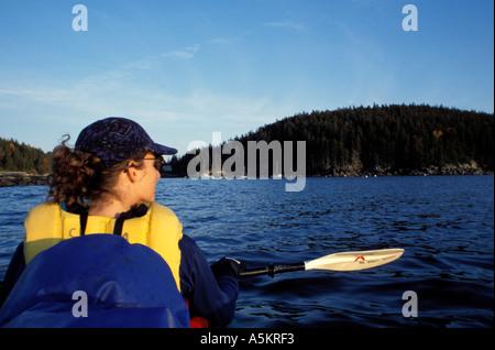 Acadia N P ME Sea Kayaking Seal Cove Mt Desert Island  - Stock Photo