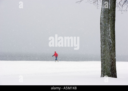 Person cross Country Skiing on snow covered beach - Stock Photo
