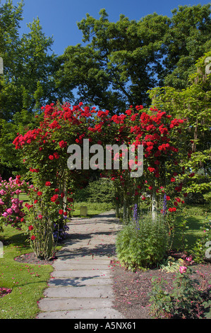 Rose garden North Rhine Westfalia Germany Rosa spec Rosenbogen mit Kletterrosen im Rosengarten Westfalenpark Dortmund - Stock Photo