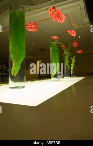 Pathumwan Princess Hotel, with indorr plants as the focus, central Bangkok Thailand - Stock Photo