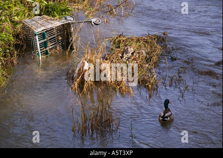 shopping trolley in water waste - Stock Photo