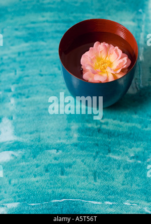 Flower head floating in cup - Stock Photo