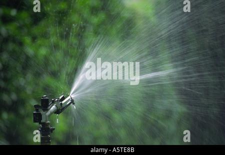 Oscillating Sprinkler in a Garden - Stock Photo