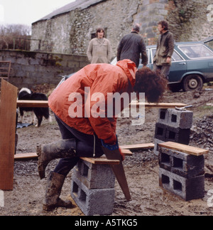 A female carpenter on a farm construction site in rural Wales UK - Stock Photo