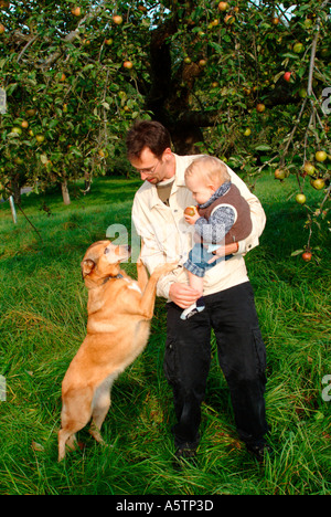 MR PR father with his baby boy and his dog on a meadow with apple trees - Stock Photo