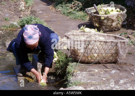 Local woman washing vegetables from wicker baskets in small stream,Dali,Yunnan Province,China. - Stock Photo