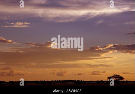 Sunset over Deception pan in the Central Kalahari, Botswana - Stock Photo