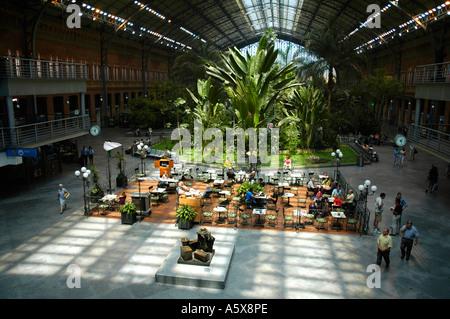 Interior of the Atocha train station and botanical garden, Madrid ...