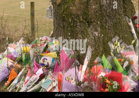 floral tributes left at the site of a fatal road traffic accident, near windermere, Cumbria, UK - Stock Photo