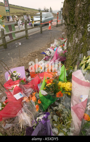 floral tributes at the site of a fatal road traffic accident near windermere, Lake district, Cumbria, UK - Stock Photo
