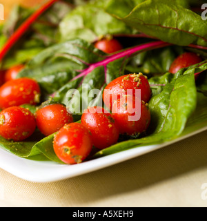 Swiss Chard and Baby Tomatoes with Parmesan Salad - Stock Photo
