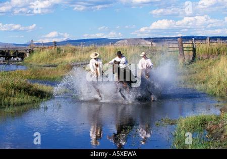 Three cowboys riding through a River Oregon USA - Stock Photo