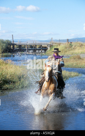 Cowboy riding through a River Oregon USA - Stock Photo
