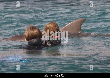 dolphin therapy with handicapped child - Stock Photo
