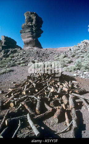 Wind weathered rock los roques de garcia formation with firewood in foreground on Mount Teide Tenerife Canary Islands - Stock Photo