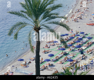 FRANCE Provence Cote d'Azur Alpes Maritime Nice Beach from above with palm tree and sunbathers under blue umbrellas - Stock Photo