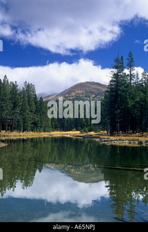 Mt. Gibbs reflected in alpine lake, Tioga Pass Road, Yosemite Nat'l. Park, CALIFORNIA - Stock Photo