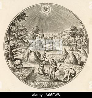 German Hay 1570 - Stock Photo