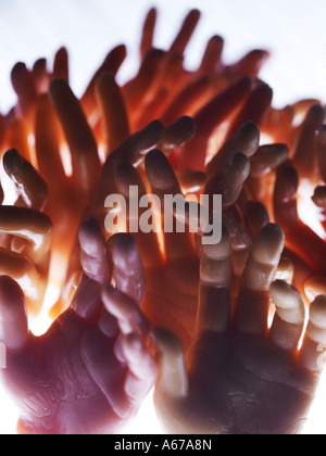 hands reaching together - Stock Photo
