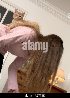 ginger kitten sitting on girls back - Stock Photo