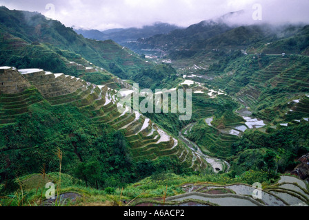 Rice terraces of Benoue Philippines in torrential downpower 2 - Stock Photo