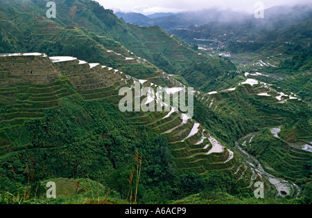 Rice terraces of Benoue Philippines in torrential downpower - Stock Photo