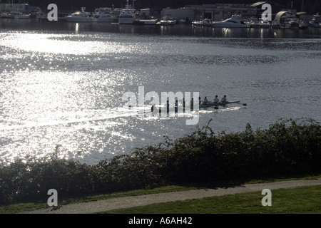 rowers on Lake Union seen from Gasworks Park in Seattle Washington - Stock Photo