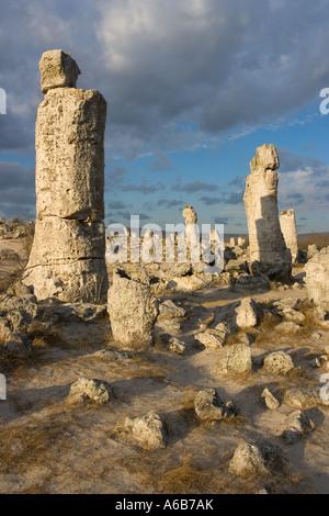 Nature phenomenon, standing stones, cylindrical limestone monoliths, Eastern Europe, Bulgaria - Stock Photo