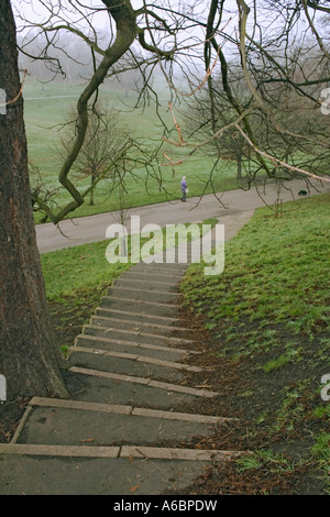 STAIRWAY leading down from One Tree Hill in Greenwich Park, with branches framing a woman walking her dog. - Stock Photo