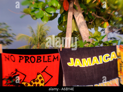 A color horizontal selective focus image of two sun lit towels hanging on a line one saying no problem and the other - Stock Photo