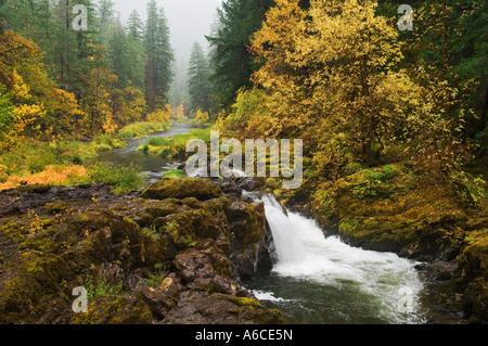 South Umpqua River in Autumn Umpqua National Forest Cascade Mountains Oregon - Stock Photo