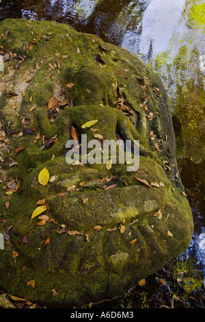 Moss covered stone carving of the Hindu God Brahma on the banks of Kbal Speam near Angkor Wat Siem Reap Cambodia - Stock Photo