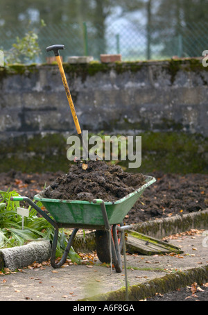 vegetable plot being fed with manure - Stock Photo