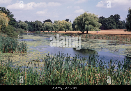 Hampton Court In Middlesex Home Park Lake England UK