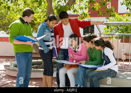 Outdoor Multiracial ethnic Asian oriental group of six senior teenage students study and compare notes together - Stock Photo