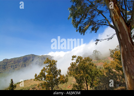 The slopes of Tejeda mountain with rolling mist in the center of Gran Canaria Canary Islands Spain - Stock Photo