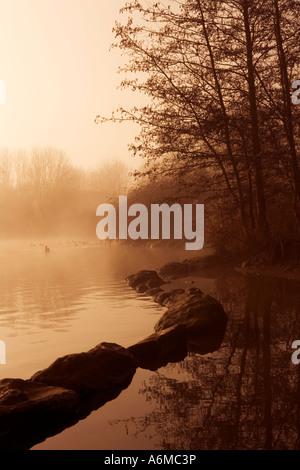 Misty Morning on Liden Lagoon - Stock Photo