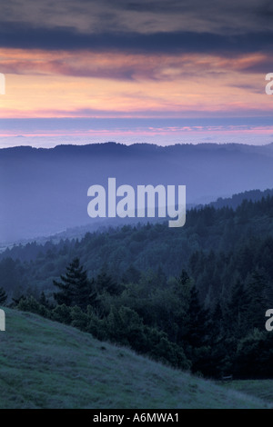 Sunset over rolling green hills and forest trees in spring from Bolinas Ridge Mount Tamalpais State Park California - Stock Photo