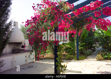 OUTSIDE KITCHEN AREA UNDER FLOWER COVERED VERANDA IN SECLUDED GARDEN IN CYPRUS - Stock Photo