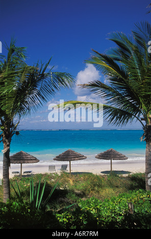Straw parasols and palm trees provide shade on Grace Bay beach on Providenciales Island in  the Turks and Caicos - Stock Photo