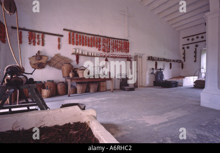 Spanish grand farm estate house hacienda in Mallorca Majorca kitchen cellar produce olive grape foods quince apple - Stock Photo