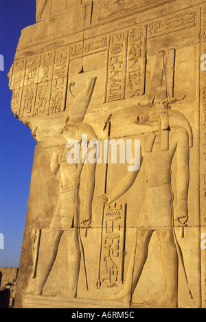 Africa, Egypt, Kom Ombo. Wall relief of Sobek the crocodile god and Horus, the falcon-headed god - Stock Photo