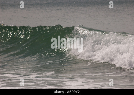 small wave breaks on beach Queensland Australia - Stock Photo