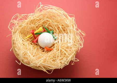 Golf Ball and Tees in Nest - Stock Photo