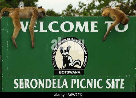 Welcome to Serondela Picknick Site, Chobe River, Botswana - Stock Photo