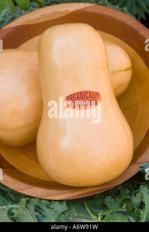 Organic Butternut squashes vegetables labeled labelled with sign organically grown harvested in wooden bowl. Cucurbita - Stock Photo