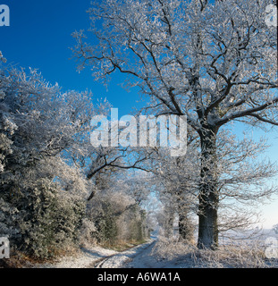 Winter Snow in Country Lane Southrepps Norfolk UK - Stock Photo